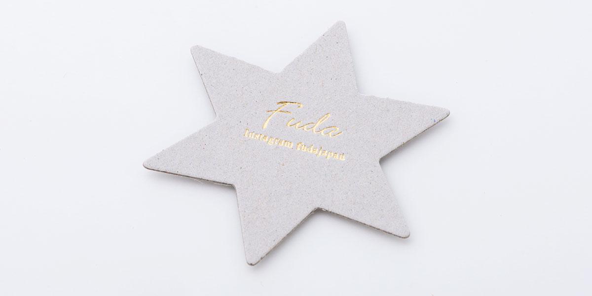 nl_star_03