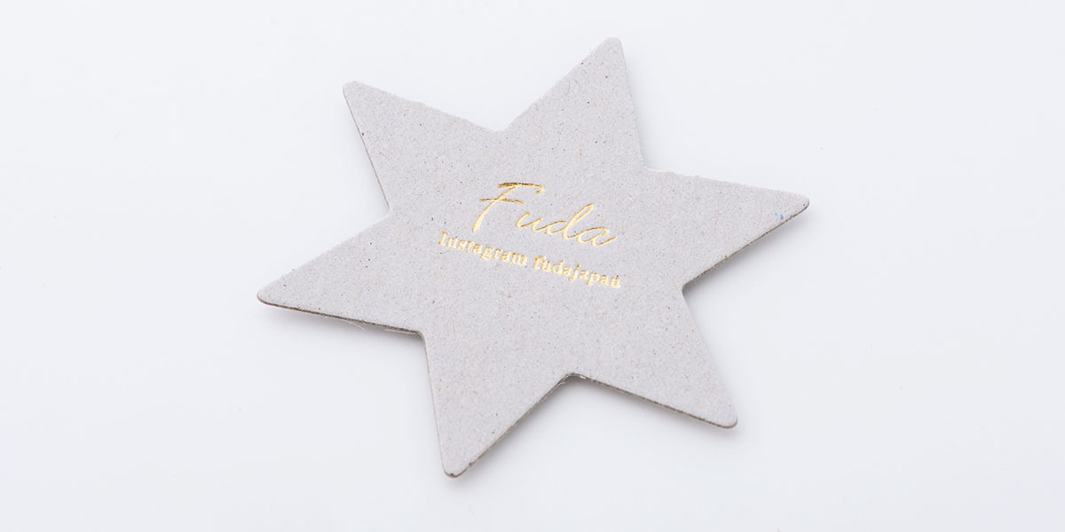 nl_star_05